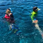 Snorkeling at the Great Barrier Reef!