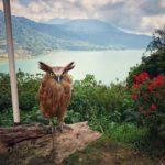 Lake Buyan selfie park