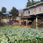 Workaway farm, Pokhara
