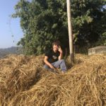 Piling the dried hay (Pokhara, Nepal)