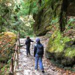 Poon Hill trek to Deurali
