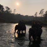 Chitwan trekking