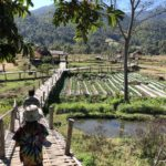 Bamboo bridges, outside of Pai