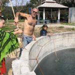 Boiling eggs in Thai hot springs