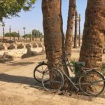 View of the ancient way from Luxor temple to Karnak temple